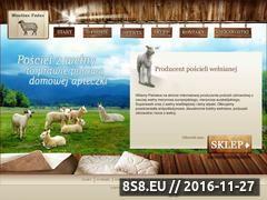 Miniaturka domeny wooltex-tedex.pl