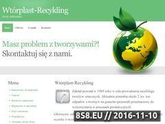 Miniaturka domeny www.wtorplast-recykling.pl