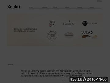 Zrzut strony Agencja interaktywna
