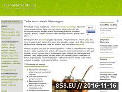 Miniaturka domeny yerbamateinfo.pl