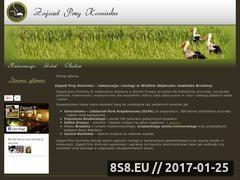 Miniaturka domeny www.zajazdprzykominku.pl