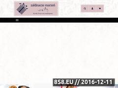 Miniaturka domeny www.zaklinaczemarzen.pl