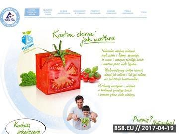 Zrzut strony Przepisy kulinarne sałatki