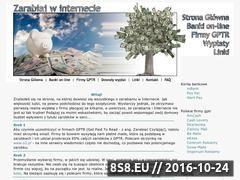 Miniaturka domeny www.zarabianie-online.strefa.pl