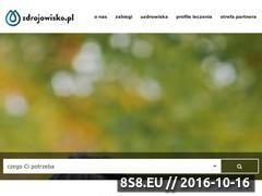 Miniaturka domeny zdrojowisko.pl