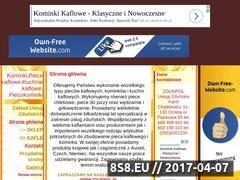 Miniaturka domeny www.zdun.pl.tl
