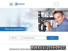Miniaturka domeny zeitmann.pl