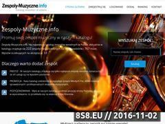 Miniaturka domeny www.zespoly-muzyczne.info