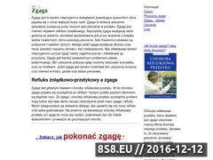 Miniaturka domeny zgaga.dozdrowia.com