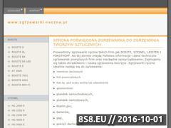 Miniaturka domeny www.zgrzewarki-reczne.pl