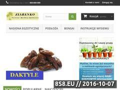 Miniaturka domeny ziarenko.net
