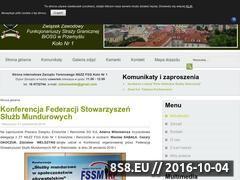 Miniaturka domeny zieloneotoki.pl