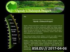 Miniaturka domeny www.zieloneprogi.pl