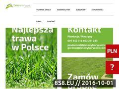 Miniaturka domeny zielonyhoryzont.com.pl