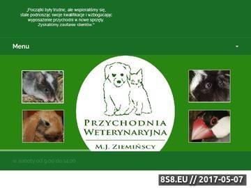 Zrzut strony M. J. Ziemińscy - usługi weterynaryjne