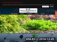 Miniaturka domeny www.zmwalkiewicz.pl