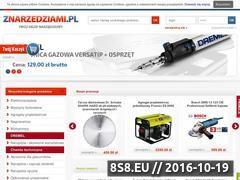 Miniaturka domeny znarzedziami.pl