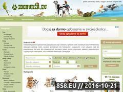 Miniaturka domeny www.zooburza.eu