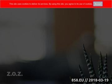 Zrzut strony ZOZ s.c. - prace montażowe