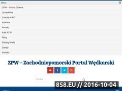 Miniaturka domeny www.zpw.pl