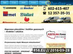 Miniaturka domeny www.zur-gazserwis.pl