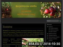 Miniaturka domeny zurawina.net