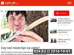 Miniaturka domeny zybcyk.pl