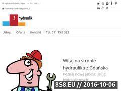 Miniaturka domeny 1hydraulikgdansk.pl
