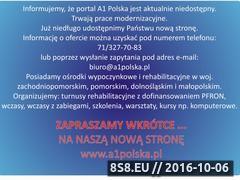 Miniaturka domeny www.a1polska.pl