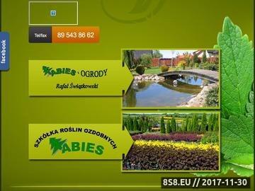 Zrzut strony Szkółka Olsztyn