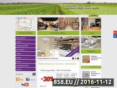 Miniaturka abm.com.pl (Wyposażenie sklepów, meble sklepowe oraz manekiny)