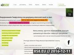 Miniaturka domeny www.adseo.pl