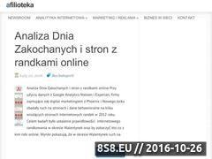 Miniaturka domeny www.afilioteka.pl