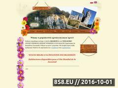 Miniaturka agro13.eu (Szczęśliwa Trzynastka)