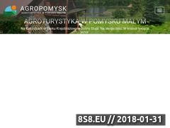 Miniaturka agropomysk.pl (Agroturystyka)