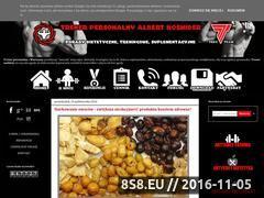 Miniaturka domeny www.albertkosmider.pl