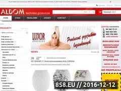 Miniaturka domeny www.aldom-ogrzewanie.pl