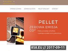 Miniaturka domeny alleco.com.pl