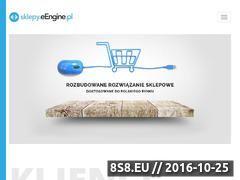 Miniaturka domeny www.allegro.ec24h.pl