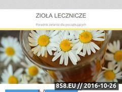 Miniaturka domeny www.alveo-ziolalecznicze.pl