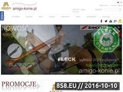 Miniaturka domeny amigo-konie.pl
