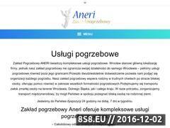 Miniaturka domeny aneri.com.pl