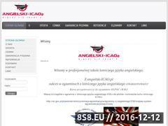 Miniaturka domeny angielski-icao.pl