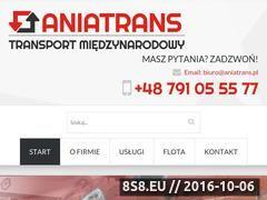 Miniaturka domeny www.aniatrans.pl