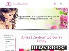 Miniaturka domeny www.anies.com.pl