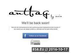 Miniaturka domeny antbags.com
