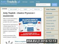 Miniaturka domeny antytradzik.pl