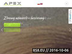 Miniaturka domeny apexcentrum.pl