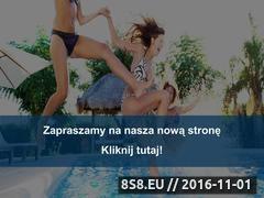 Miniaturka domeny www.api-baseny.com.pl