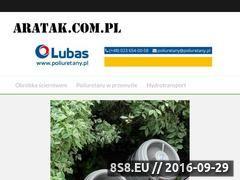 Miniaturka aratak.com.pl (Sklep z grami planszowymi i zabawkami)